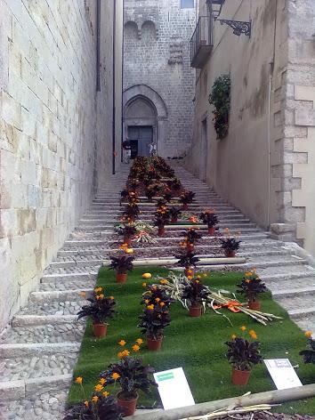 Girona IV